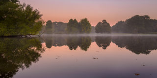 Early morning sunrise scene in park. Early morning sunrise scene of pond and trees in park Stadspark Groningen, The Netherlands Royalty Free Stock Photography