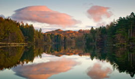 Early Morning Tarn Hows Royalty Free Stock Photos