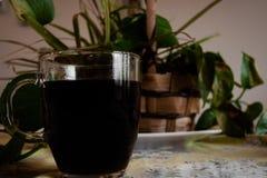 Early Morning Tea stock photography