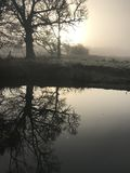 Early morning tree reflection in the canal at dawn in mist royalty free stock image