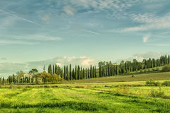 Early morning on Tuscany Royalty Free Stock Photos