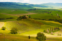 Early morning on Tuscany Stock Photography