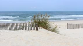 Early morning at Vagueira Beach with sea oats and dune fence in Aveiro, Portugal stock photos