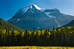 Early morning view of Mount Robson Royalty Free Stock Photography