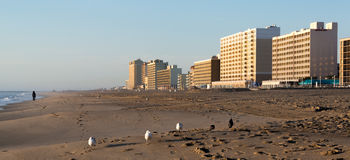 Early Morning on Virginia Beach Royalty Free Stock Image