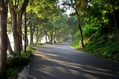 The morning of East Lake - road stock images