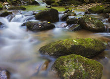 Early morning waterway. Stream running over some rocks in Pisgah National Forest in North Carolina Stock Photography
