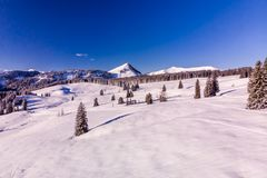 Trees covered by fresh snow in Austria Alps. Early morning in Winterwonderland Austria Royalty Free Stock Images