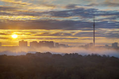 Early morning yellow city sunrise and fog Royalty Free Stock Photo