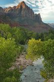 Early Morning, Zion Stock Photography
