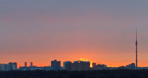 Early pink dawn over city in spring Royalty Free Stock Photography