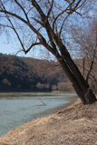 Early Spring Along the Susquehanna River. Taken during an early spring walk along the Susquehanna River at Tunkhannock, Pennsylvania stock photos