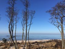 Early spring Baltic sea Royalty Free Stock Images