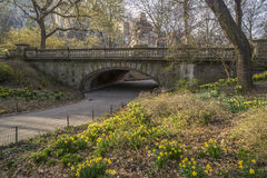 Early spring in Central Park, New York City Stock Photo