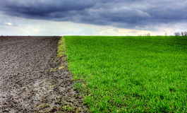 Early spring field. With clouds royalty free stock images
