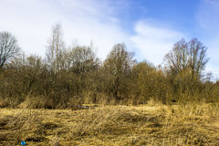 Early spring in the fieldin Russia. March Royalty Free Stock Images