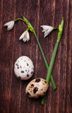 Early spring flowers with quail eggs on a dark vintage wood back. Early spring flowers with some small quail eggs on a dark vintage wood background stock images