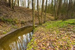 Early spring forest with small stream landscape Royalty Free Stock Photos