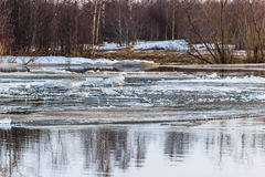 Early spring, the ice drift on the river. Ice floating in the river Stock Photography
