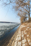 Early spring, just thawed lake shore Royalty Free Stock Image