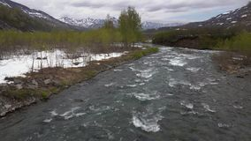 Early spring landscape cold mount river, just flowering trees along river banks. Early spring landscape of Kamchatka Peninsula: rough cold mountain river stock video