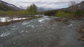 Early spring landscape mountain river, just flowering trees along river banks. Early spring landscape of Kamchatka Peninsula: cold rough mountain river Paratunka stock video footage