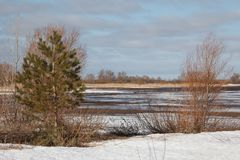 Early spring landscape. With river Stock Images