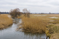 Early spring landscape with small river Merla in Ukraine Stock Image