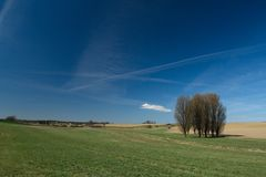 Early spring meadows and fields with a clump of trees. A blue sky cut with many airplanes streak Stock Photography