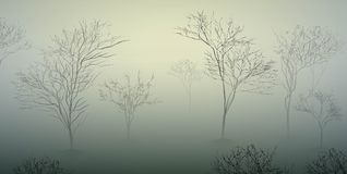 Early spring morning in the forest, March nature scene, foggy morning,. Vector Royalty Free Stock Images
