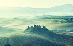 Early spring morning in Tuscany, Italy stock images