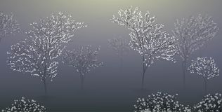 Early spring morning with white blooming treenature scene, foggy morning in the garden,. Vector Royalty Free Stock Image