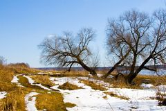 Free Early Spring On The River. Stock Photography - 12709762