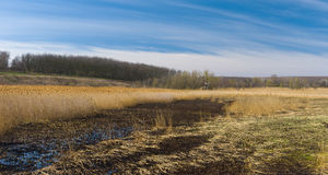 Early spring panoramic landscape with flood-land Royalty Free Stock Images