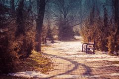 Early spring in the park. The March sun is shining, the remains of snow lie on the paths. Two metal benches in park are empty on t. His warm spring day. Toned Stock Images