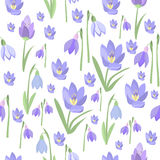 Early spring purple crocus and snowdrops nature beauty flowers vector. Early spring purple crocus and snowdrops nature beauty flowers seamless pattern vector Royalty Free Stock Image