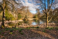 Lake in early springtime woodland Royalty Free Stock Photography