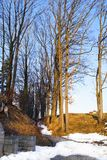 Early spring in small village in Germany, Europe Royalty Free Stock Images