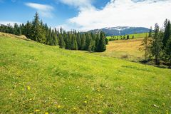 Early springtime countryside in mountains royalty free stock images