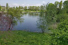 Early springtime green on a beauty lake in district Drujba. Sofia, Bulgaria stock photography