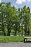Early springtime green on a beauty lake in district Drujba. Sofia, Bulgaria stock photo