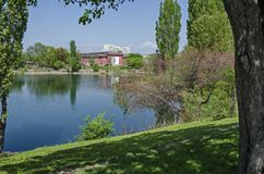Early springtime green, dry reed or rush and house on a beauty lake in residential district Drujba. Sofia, Bulgaria stock images