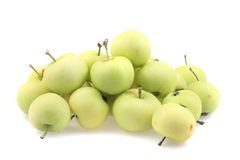 Early sumer green apples Royalty Free Stock Photo