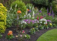 Early summer garden Royalty Free Stock Photos
