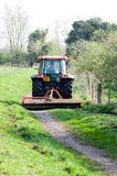 Early summer grass cutting Royalty Free Stock Images