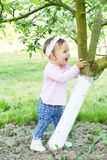 Early summer joyful baby Stock Image