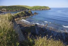 Early summer morning at Hope Cove, Devon, England Royalty Free Stock Photos