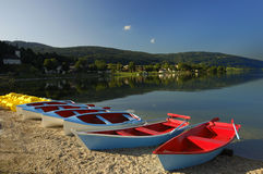 Early summer morning on the lake. Very early in the morning, one summer's day, on the shore of the Lac de Joux, Switzerland Royalty Free Stock Photos