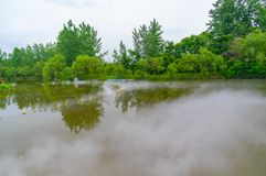 Early Summer scenery of Mulan grassland Scenic spot in Wuhan, Hubei Province, China stock photography