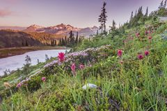 Early Sunset Over Alpine Meadow Royalty Free Stock Images
